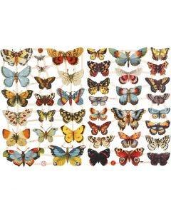 Kiiltokuvat, perhoset, 16,5x23,5 cm, 2 ark/ 1 pkk