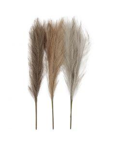 Pampas ruoho, Pit. 50 cm, vaalea puuteri, vaaleanruskea, vaaleanharmaa, 3 kpl/ 1 kerä