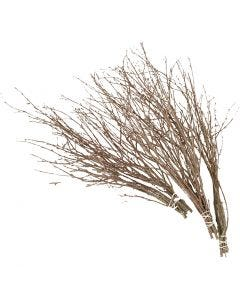 Pääsiäisoksat, Pit. 50-60 cm, 20 kpl/ 1 pkk