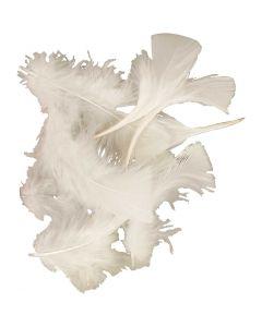 Höyhenet, koko 7-8 cm, valkoinen, 50 g/ 1 pkk