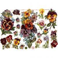 Kiiltokuvat, kukat, 16,5x23,5 cm, 3 ark/ 1 pkk