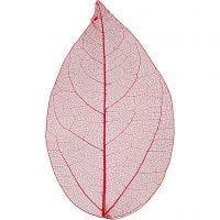Kuivatut lehdet, Pit. 6-8 cm, punainen, 20 kpl/ 1 pkk