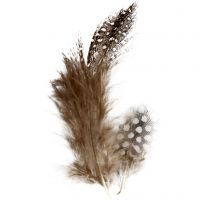 Helmikanan höyhenet, ruskea, 3 g/ 1 pkk