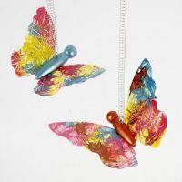 Koristeelliset perhoset