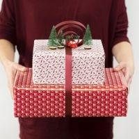 Nauhalla ja miniatyyri tuotteilla koristeltu lahjapaketti